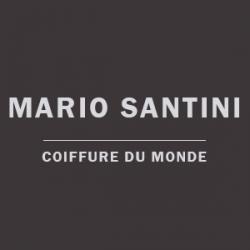 Logo Mario Santini