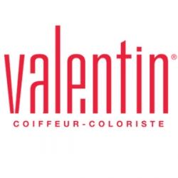 Logo Valentin
