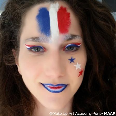 Maquillage drapeau France